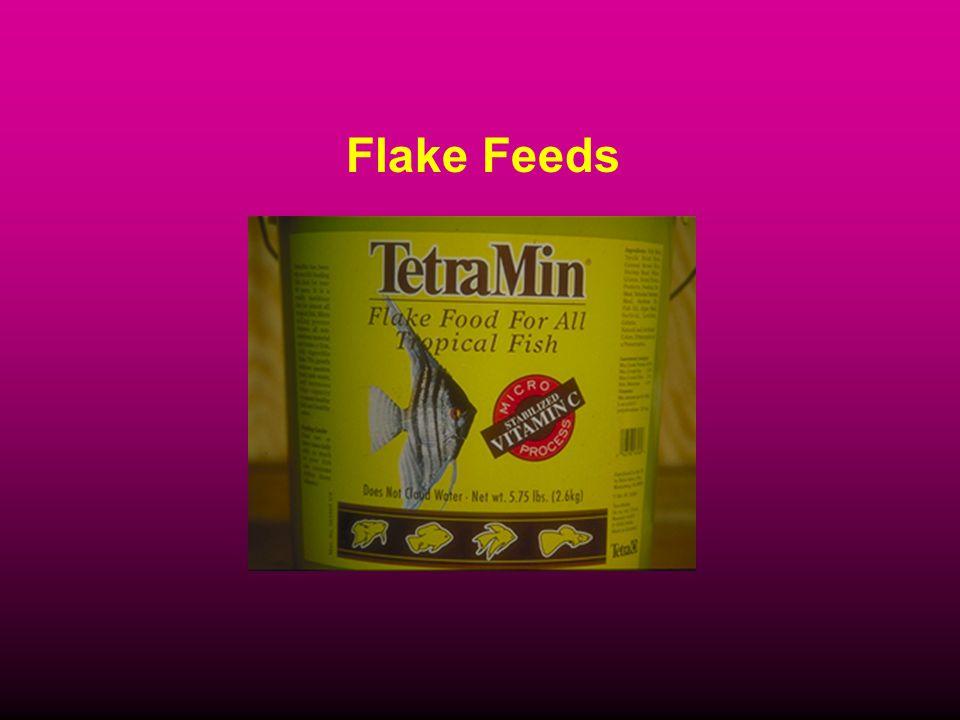 Flake Feeds