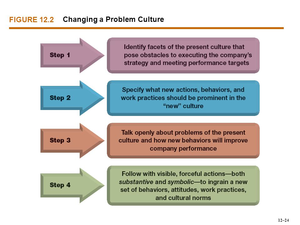 FIGURE 12.2 Changing a Problem Culture 12–24