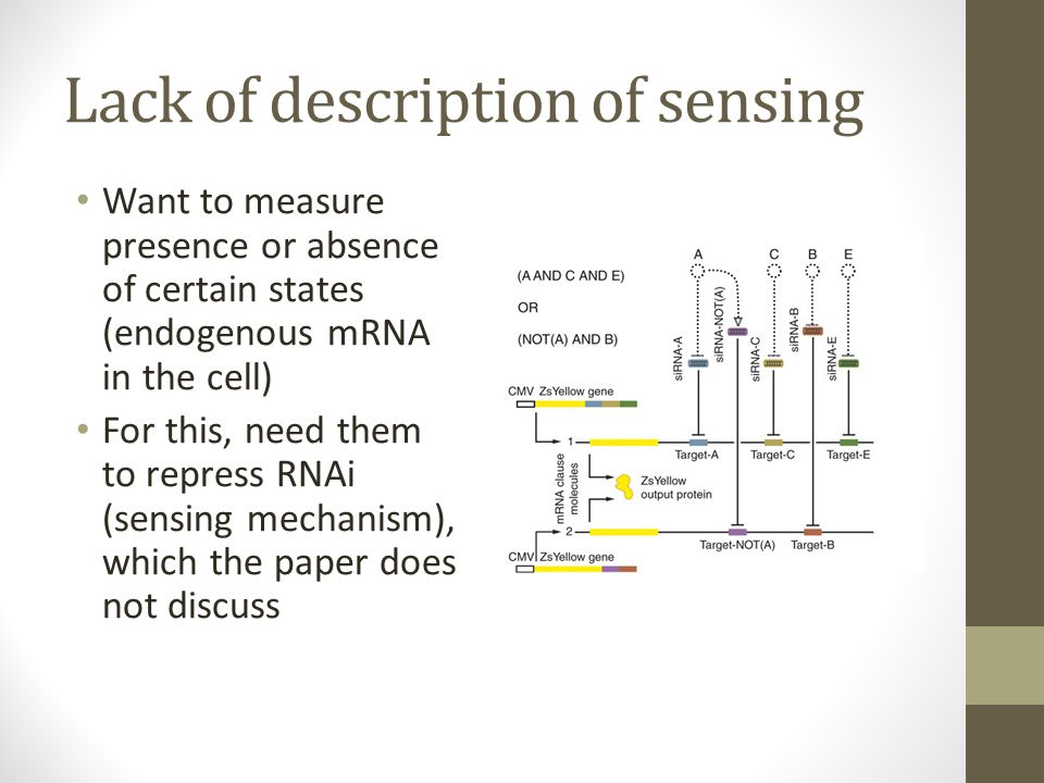 Lack of description of sensing Want to measure presence or absence of certain states (endogenous mRNA in the cell) For this, need them to repress RNAi (sensing mechanism), which the paper does not discuss