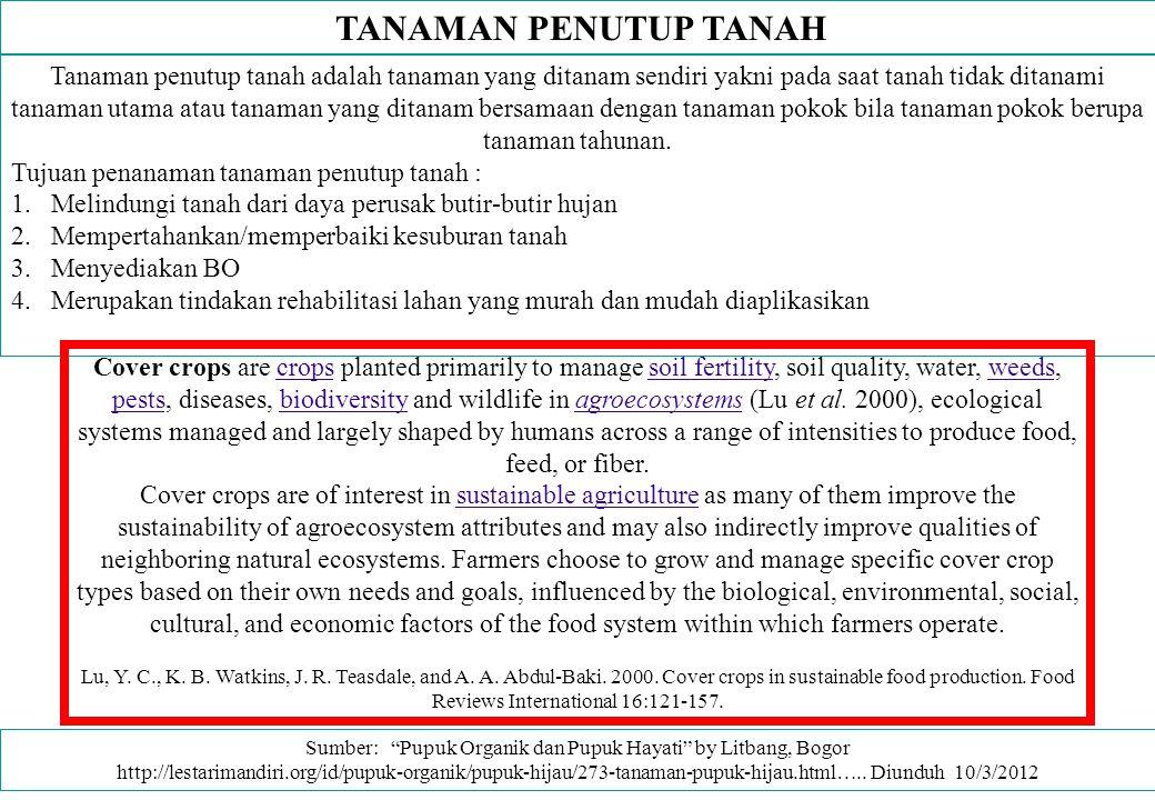 TANAMAN PENUTUP TANAH Tanaman penutup tanah adalah tanaman yang ditanam sendiri yakni pada saat tanah tidak ditanami tanaman utama atau tanaman yang d