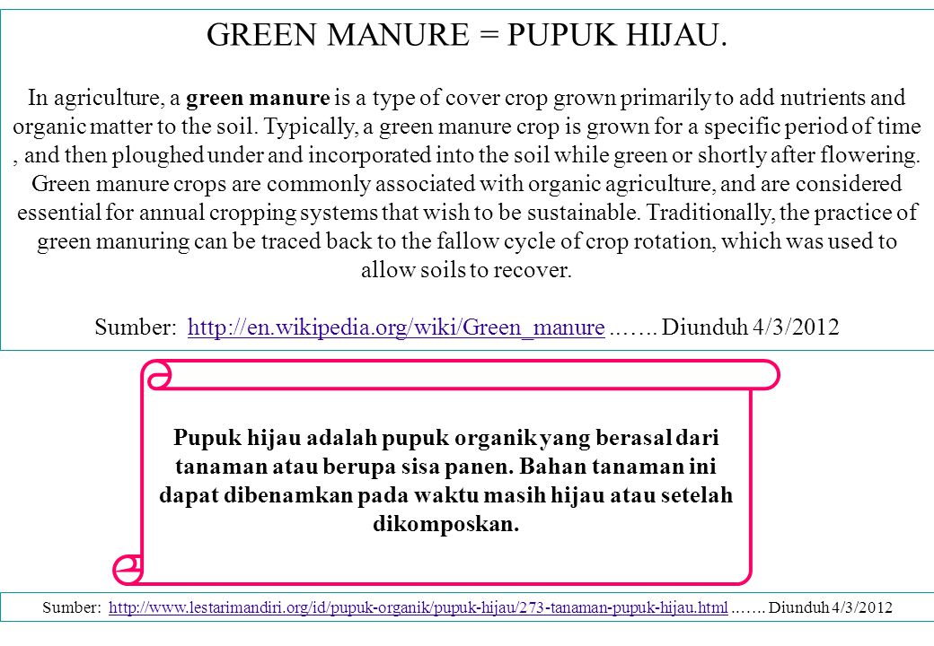 FUNGSI PUPUK HIJAU Green manure crops may include legumes such as cowpeas, soybeans, annual sweet clover, vetch, sesbania, and velvet beans, as well as non-leguminous crops such as sudangrass, millet, sorghum, and buckwheat (Sullivan, Preston.