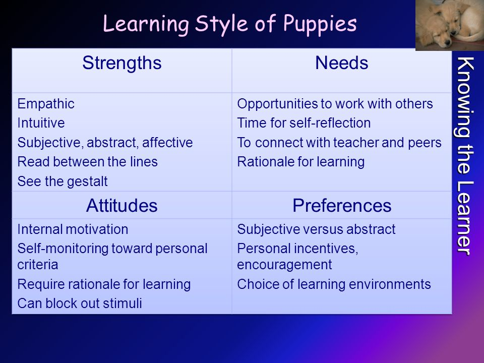 Knowing the Learner Learning Style of Puppies
