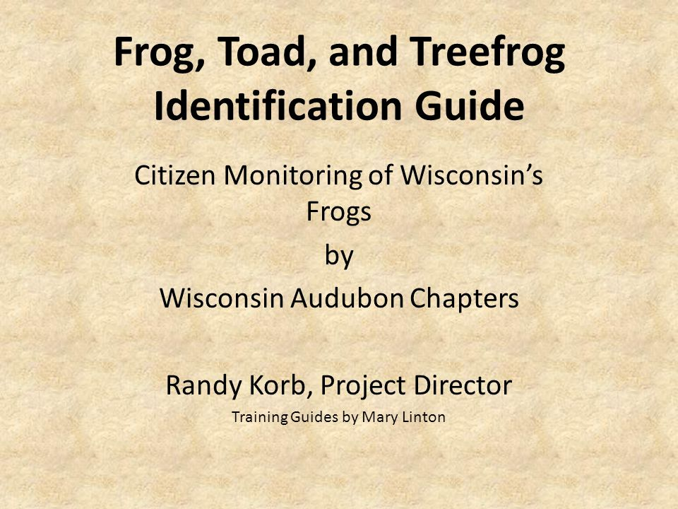 Frog, Toad, and Treefrog Identification Guide Citizen Monitoring of Wisconsin's Frogs by Wisconsin Audubon Chapters Randy Korb, Project Director Training Guides by Mary Linton