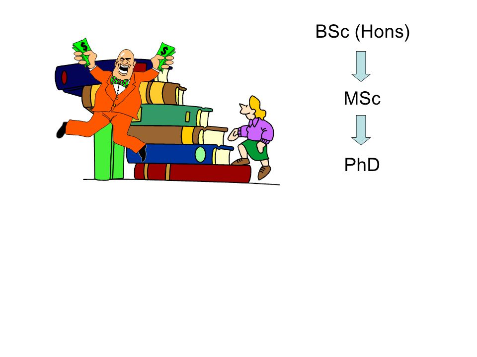 BSc (Hons) MSc PhD