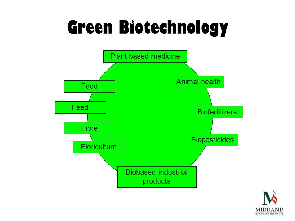 Green Biotechnology Food Animal health Feed Fibre Biofertilizers Floriculture Biobased industrial products Biopesticides Plant based medicine