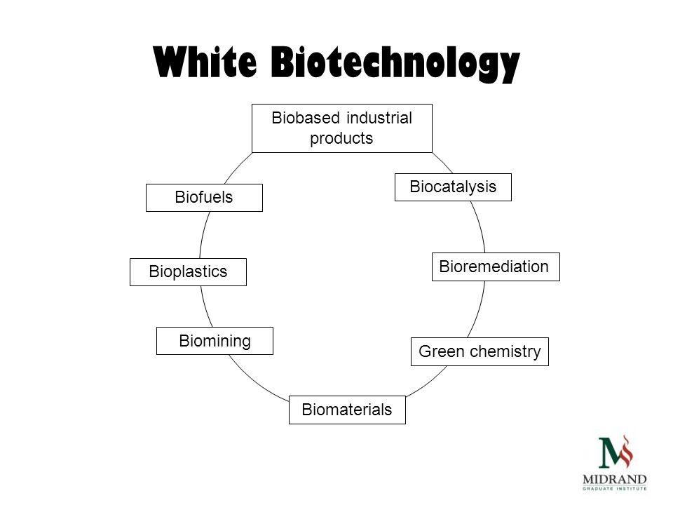 White Biotechnology Biofuels Biocatalysis Bioremediation Green chemistry Bioplastics Biomining Biomaterials Biobased industrial products