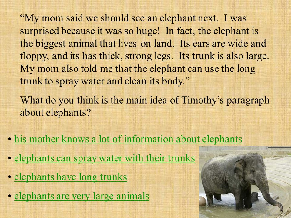 My mom said we should see an elephant next. I was surprised because it was so huge.