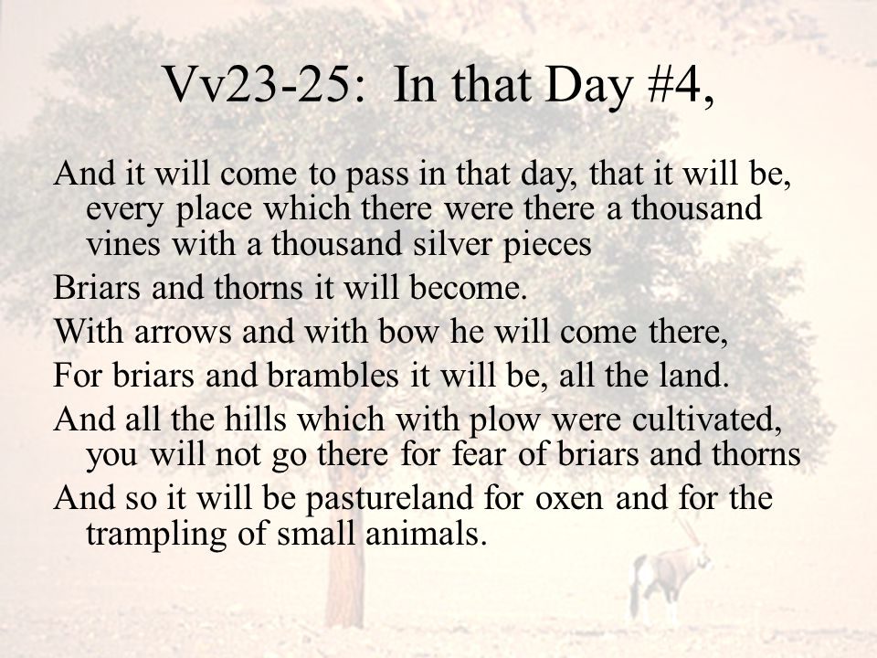 Vv23-25: In that Day #4, And it will come to pass in that day, that it will be, every place which there were there a thousand vines with a thousand si