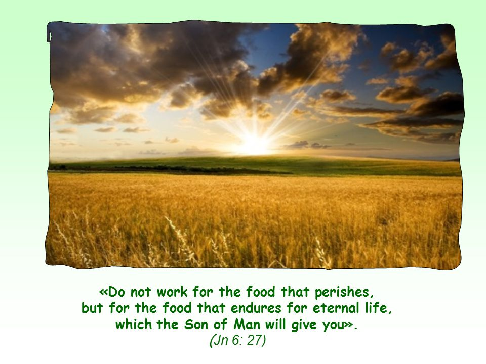 «Do not work for the food that perishes, but for the food that endures for eternal life, which the Son of Man will give you».