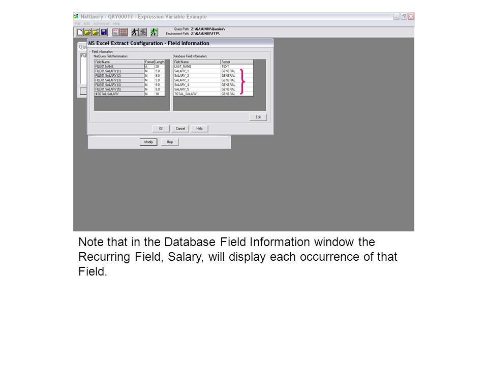Note that in the Database Field Information window the Recurring Field, Salary, will display each occurrence of that Field.