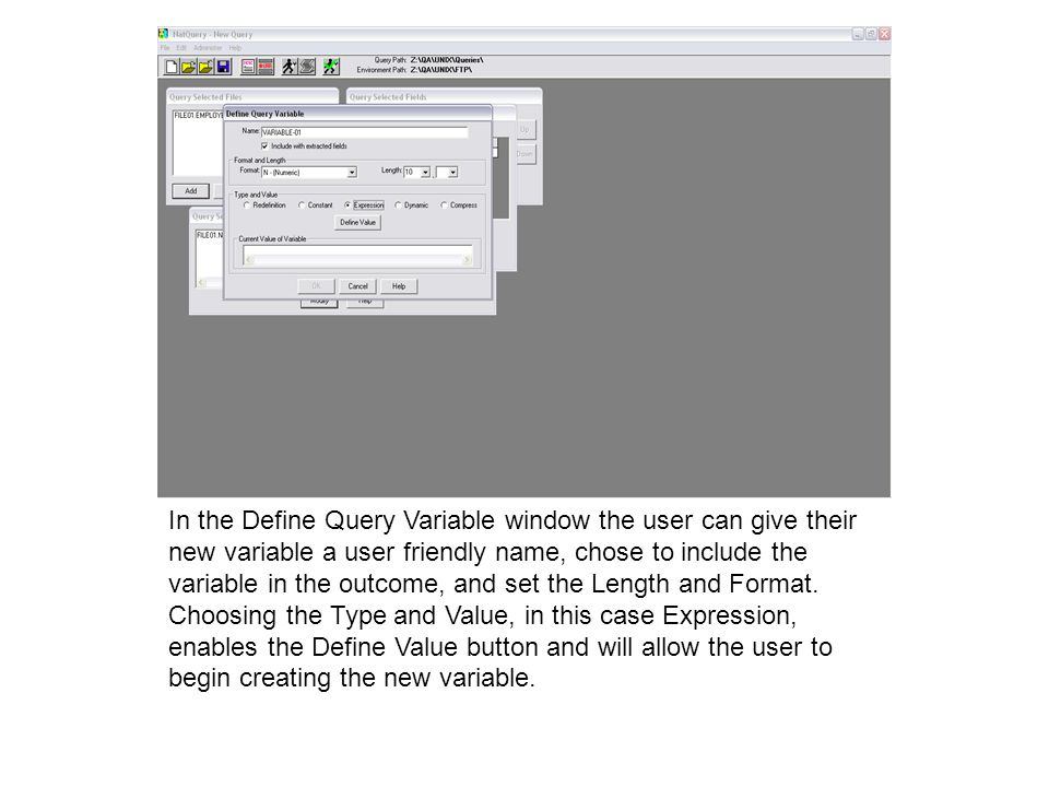 In the Define Query Variable window the user can give their new variable a user friendly name, chose to include the variable in the outcome, and set the Length and Format.