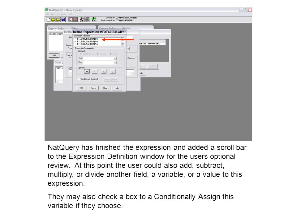 NatQuery has finished the expression and added a scroll bar to the Expression Definition window for the users optional review. At this point the user