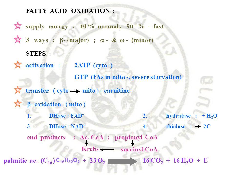 FATTY ACID OXIDATION : supply energy : 40 % normal ; 90 + % - fast 3 ways :  - (major) ;  - &  - (minor) STEPS : activation : 2ATP (cyto -) GTP (FA