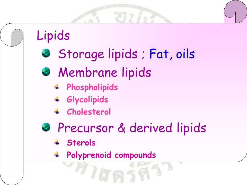 Lipids Storage lipids ; Fat, oils Membrane lipids Phospholipids Glycolipids Cholesterol Precursor & derived lipids Sterols Polyprenoid compounds