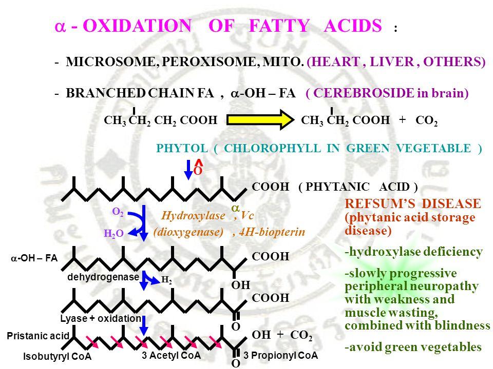 ^  - OXIDATION OF FATTY ACIDS : - MICROSOME, PEROXISOME, MITO. (HEART, LIVER, OTHERS) - BRANCHED CHAIN FA,  -OH – FA ( CEREBROSIDE in brain) CH 3 CH