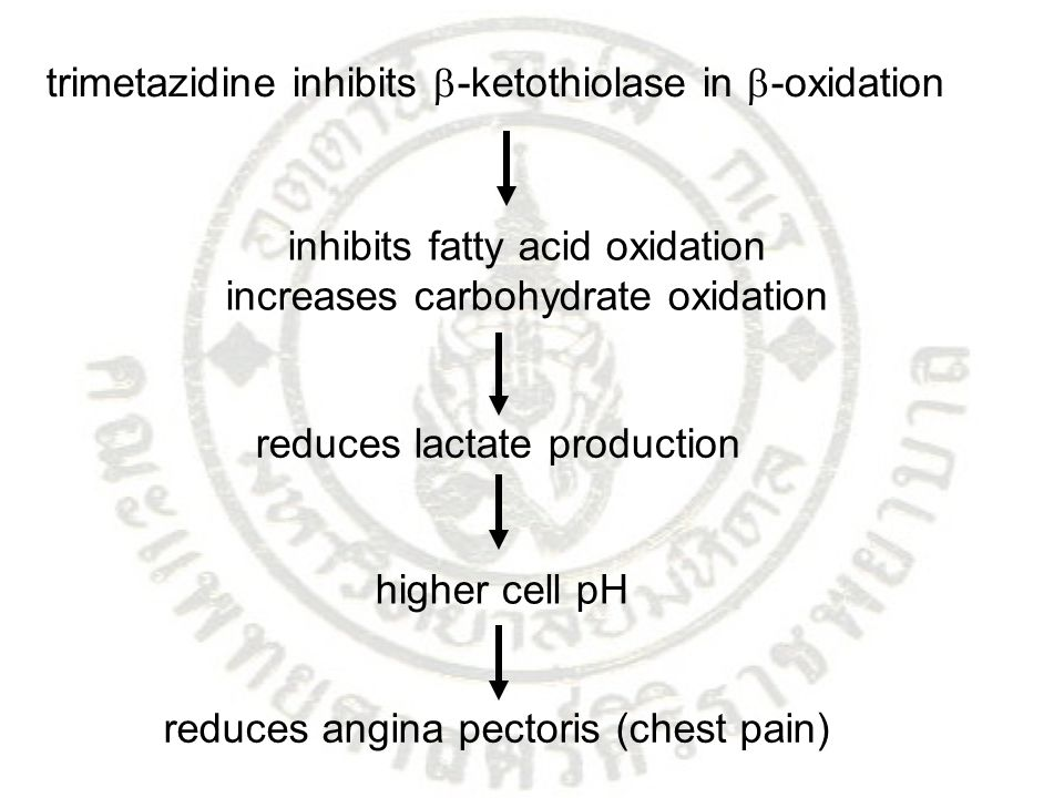 trimetazidine inhibits  -ketothiolase in  -oxidation inhibits fatty acid oxidation increases carbohydrate oxidation reduces lactate production highe