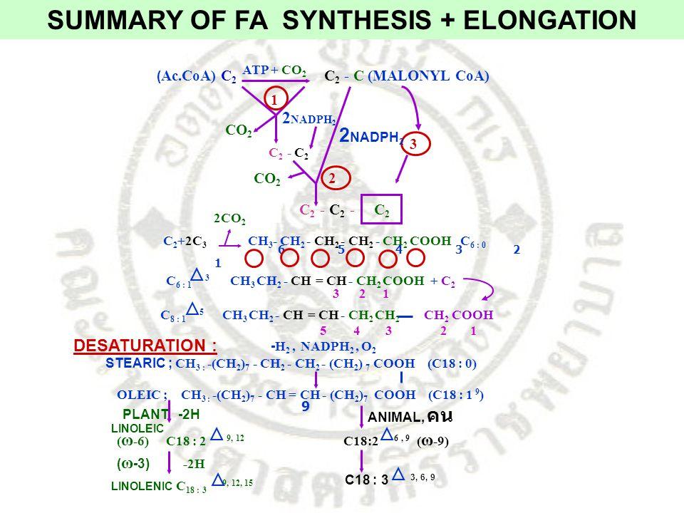 C 2 +2C 3 ( Ac.CoA) C 2 C 2 - C (MALONYL CoA) ATP + CO 2 CO 2 2 NADPH 2 C 2 - C 2 2 NADPH 2 CO 2 C 2 - C 2 - C 2 3 2 1 2CO 2 CH 3 - CH 2 - CH 2 - CH 2