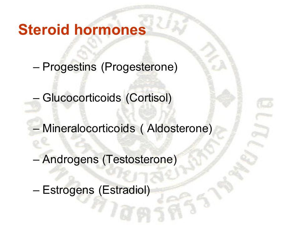 Steroid hormones –Progestins (Progesterone) –Glucocorticoids (Cortisol) –Mineralocorticoids ( Aldosterone) –Androgens (Testosterone) –Estrogens (Estra