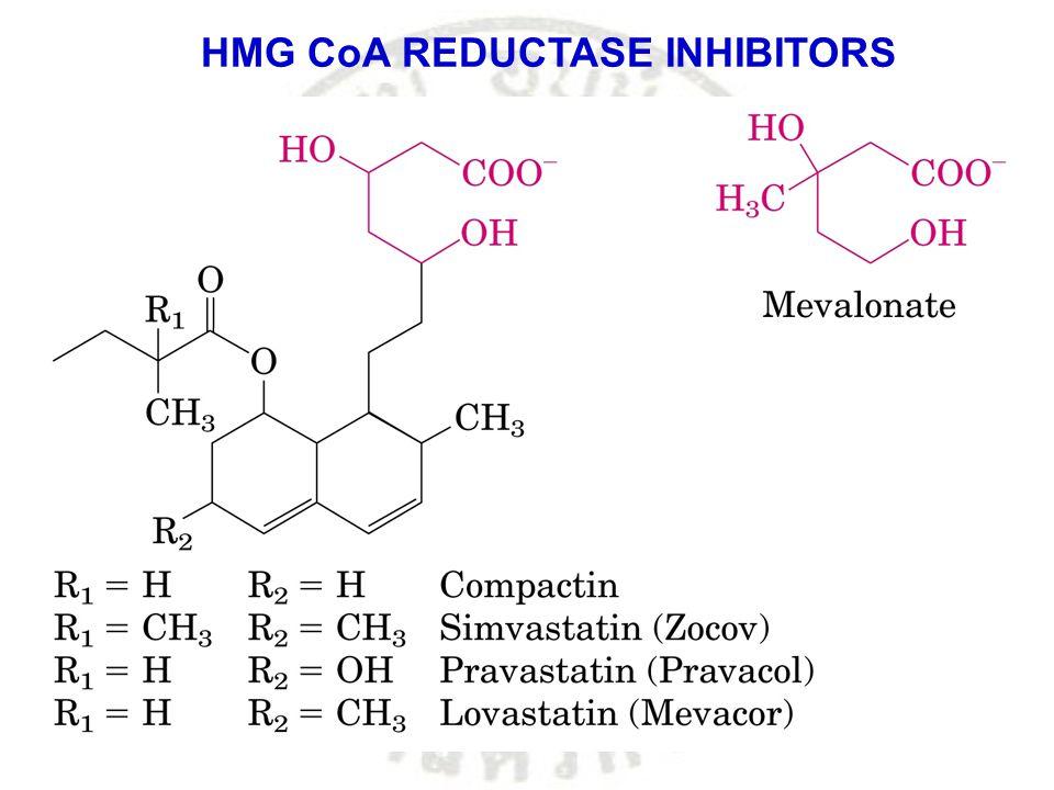 HMG CoA REDUCTASE INHIBITORS