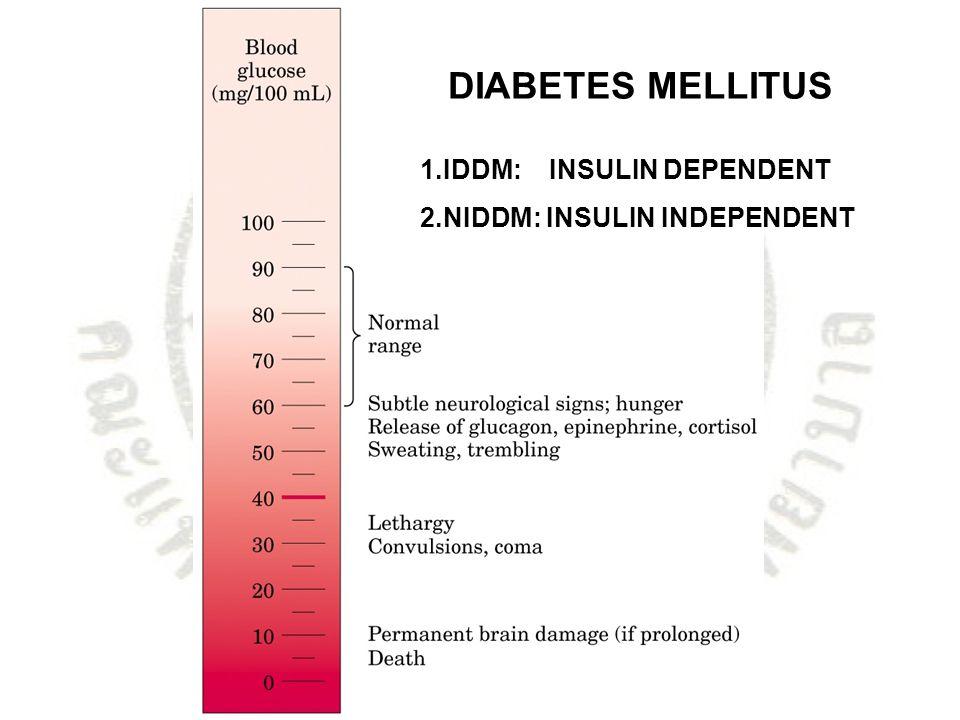 DIABETES MELLITUS 1.IDDM: INSULIN DEPENDENT 2.NIDDM: INSULIN INDEPENDENT