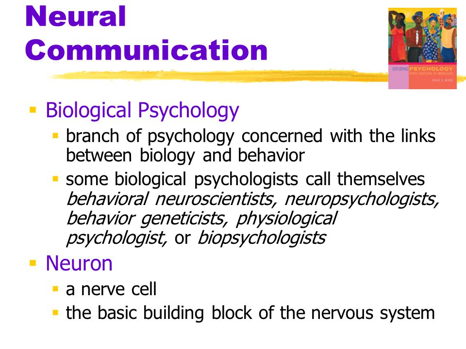 Neural Communication  Biological Psychology  branch of psychology concerned with the links between biology and behavior  some biological psychologi