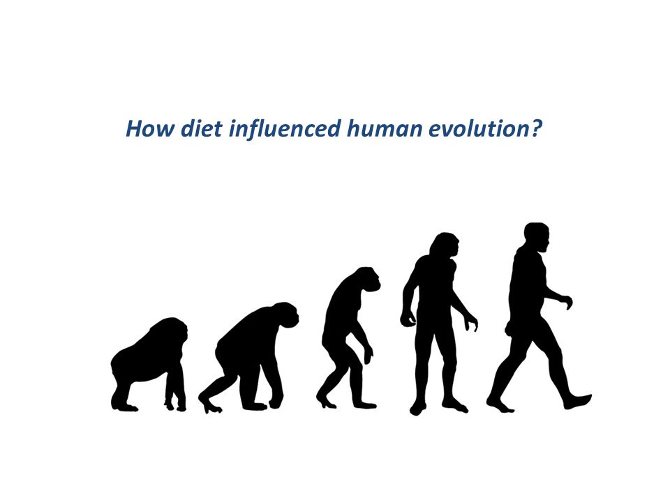 B) Diet and Health.Diet and human evolution.