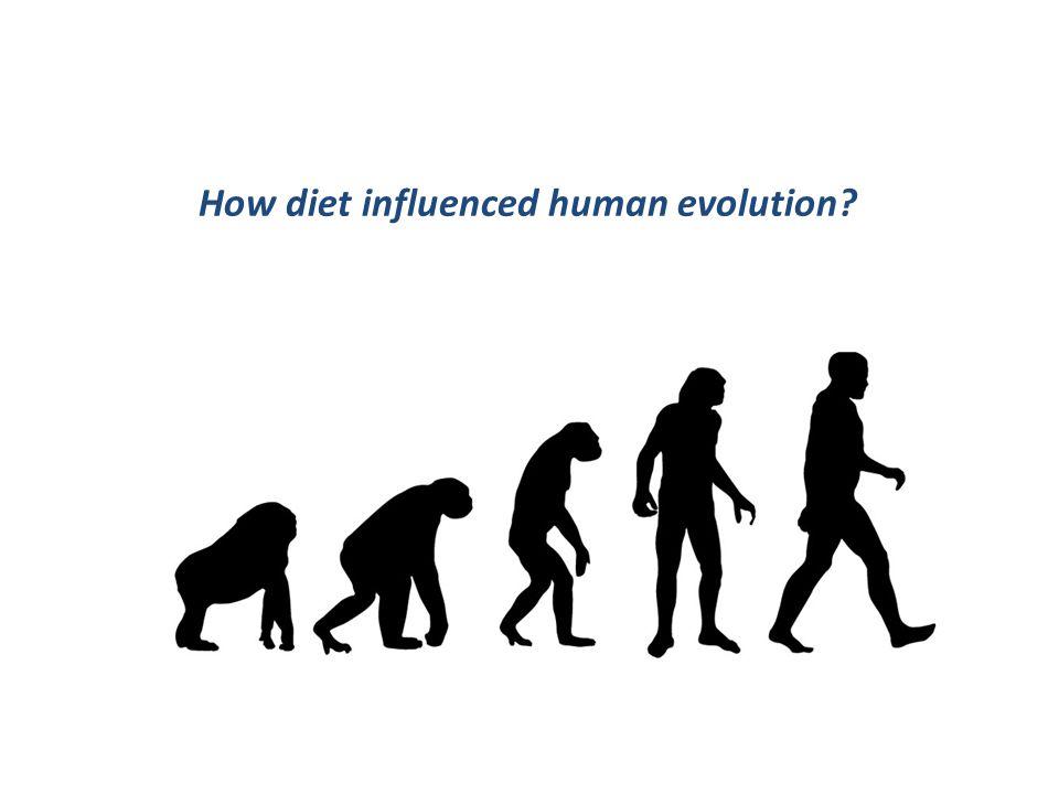 D) Diet and Health. Types of Diet. Dukan Diet & Atkins Diet