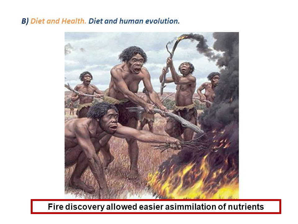 B) Diet and Health. Diet and human evolution.