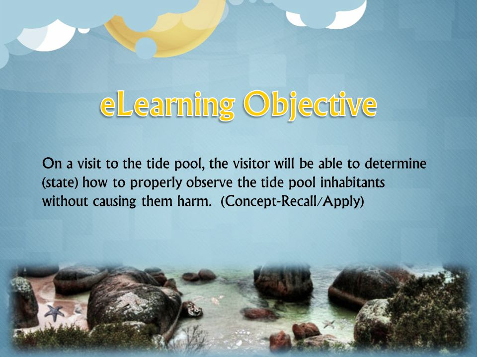 On a visit to the tide pool, the visitor will be able to determine (state) how to properly observe the tide pool inhabitants without causing them harm.