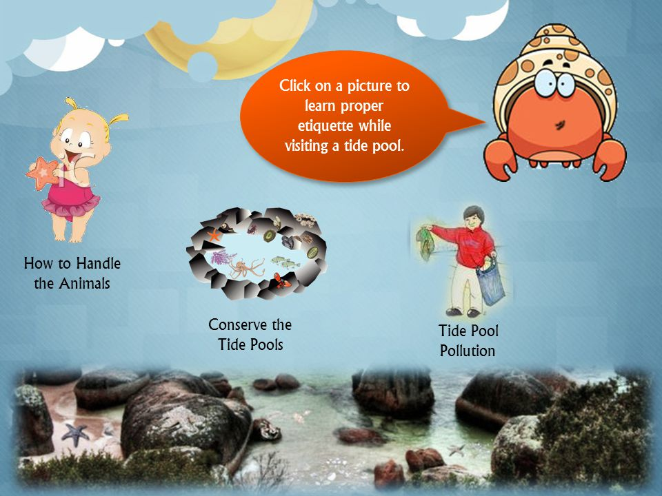 Click on a picture to learn proper etiquette while visiting a tide pool.