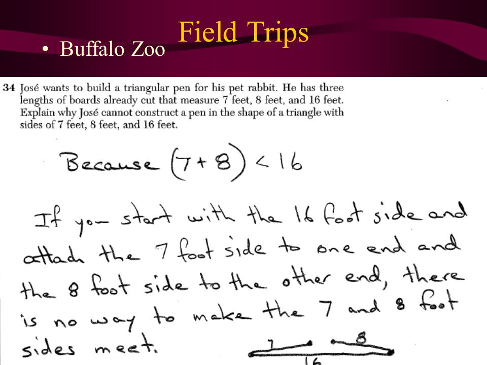 Field Trips Buffalo Zoo