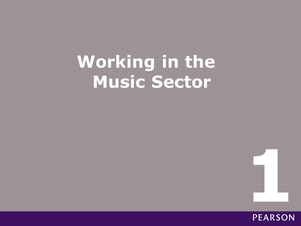 Working in the Music Sector 1