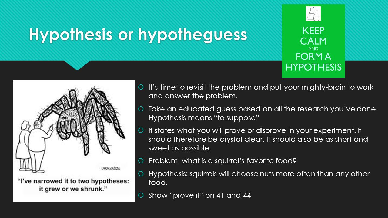 Hypothesis or hypotheguess  It's time to revisit the problem and put your mighty-brain to work and answer the problem.  Take an educated guess based