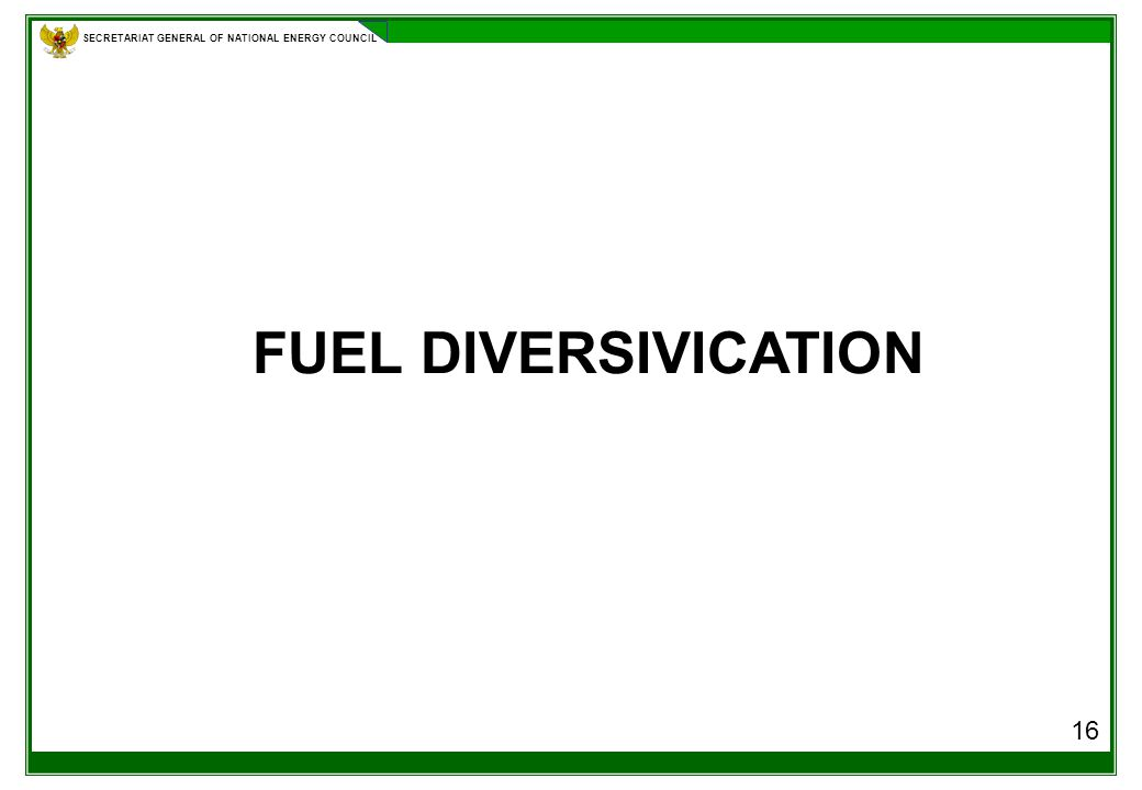 SECRETARIAT GENERAL OF NATIONAL ENERGY COUNCIL 16 FUEL DIVERSIVICATION