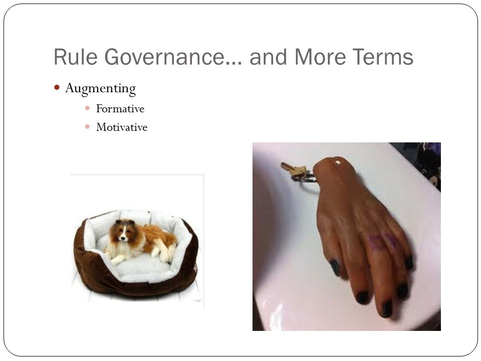 Rule Governance… and More Terms Augmenting Formative Motivative