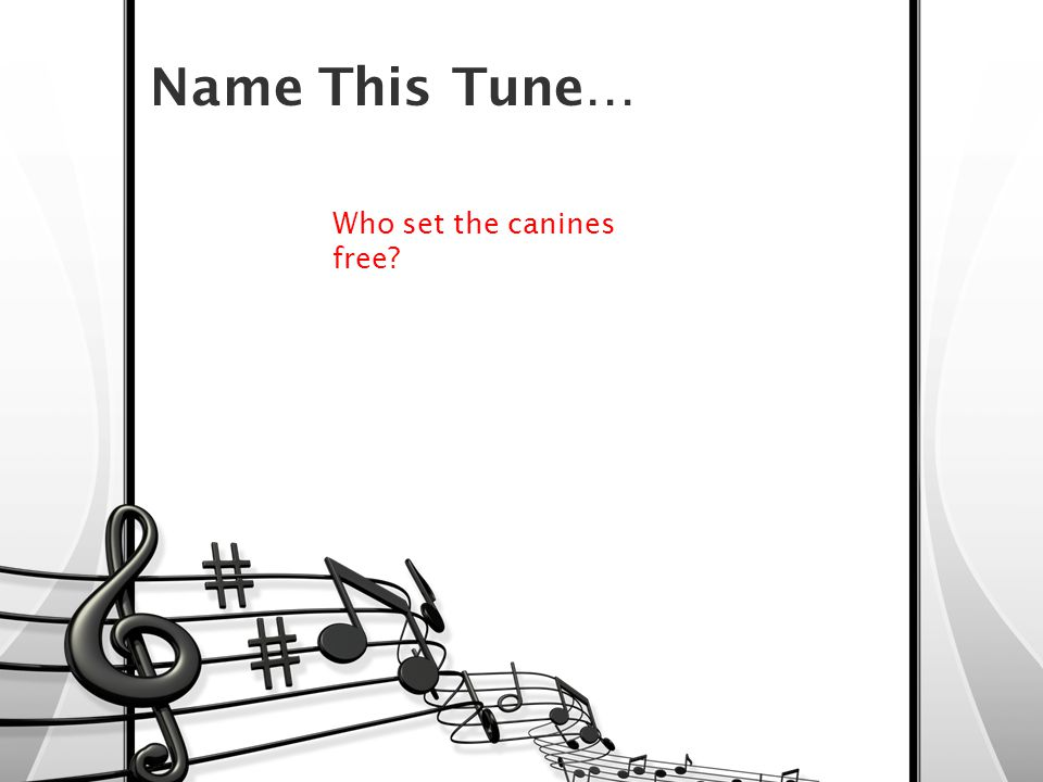 Who set the canines free.