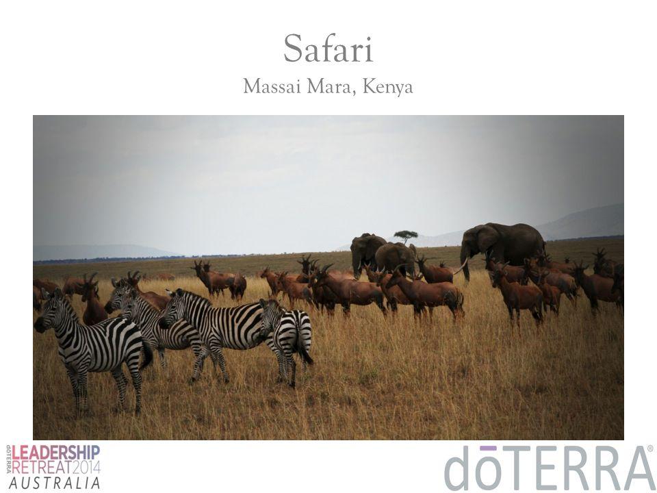 Safari Massai Mara, Kenya