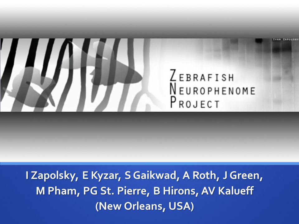 ZEBRAFISH NEUROPHENOME PROJECT The ZNP was started by the ZNRC, and is dedicated toward producing a ZND The ZNP was started by the ZNRC, and is dedicated toward producing a ZND Let's start by defining these acronyms Let's start by defining these acronyms