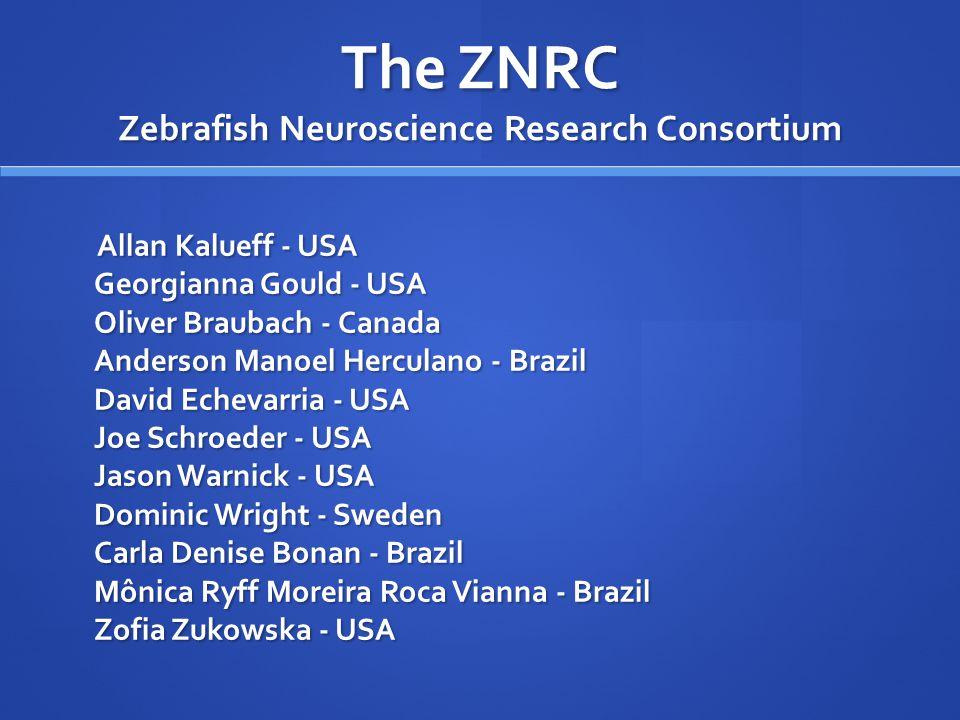 The ZNRC Zebrafish Neuroscience Research Consortium Allan Kalueff - USA Georgianna Gould - USA Oliver Braubach - Canada Anderson Manoel Herculano - Br