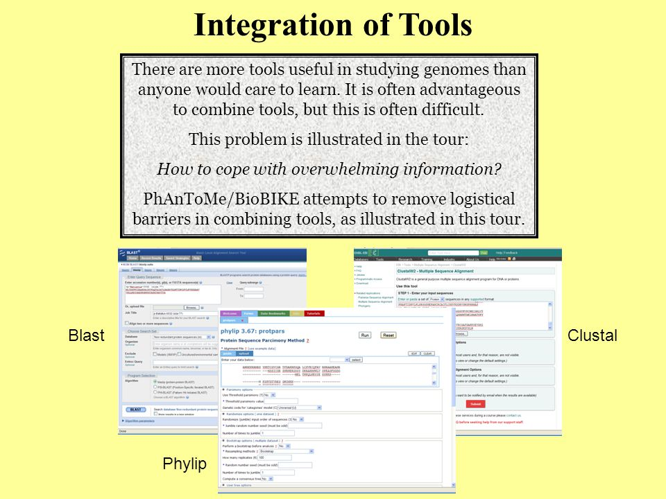 Integration of Tools There are more tools useful in studying genomes than anyone would care to learn.