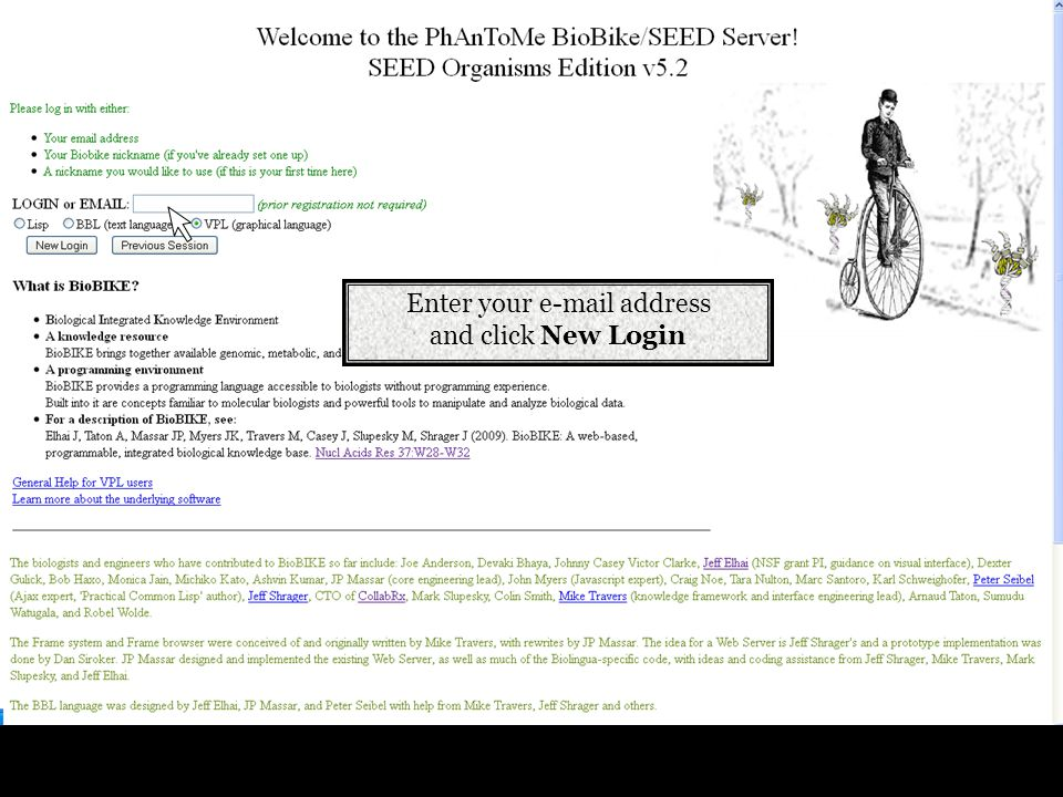 Enter your e-mail address and click New Login