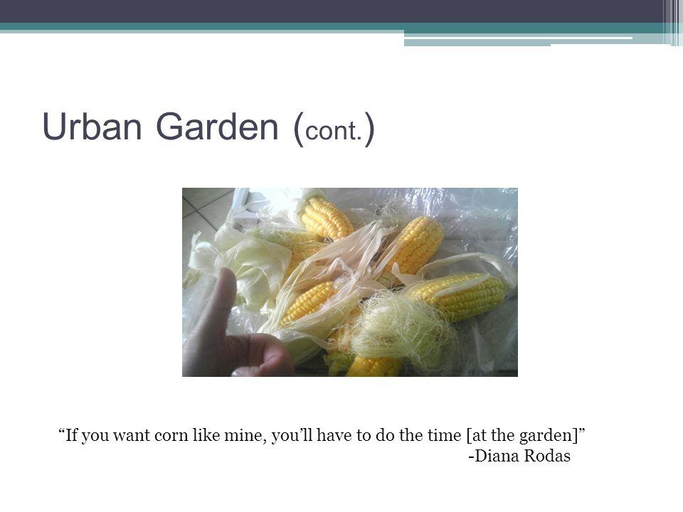 Urban Garden ( cont.