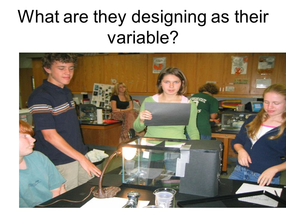 What are they designing as their variable?