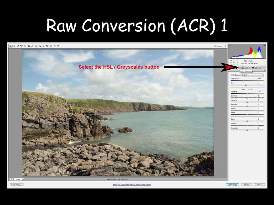 Raw Conversion (ACR) 1