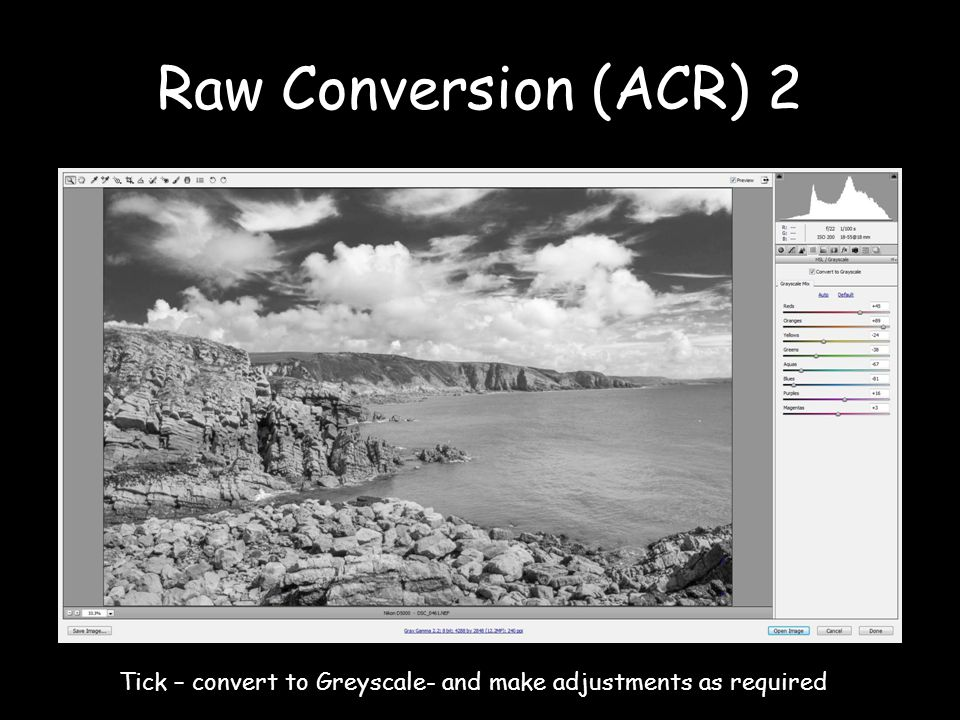 Raw Conversion (ACR) 2 Tick – convert to Greyscale- and make adjustments as required