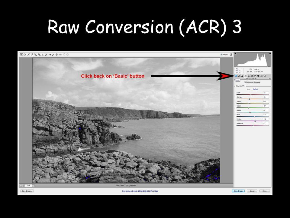 Raw Conversion (ACR) 3