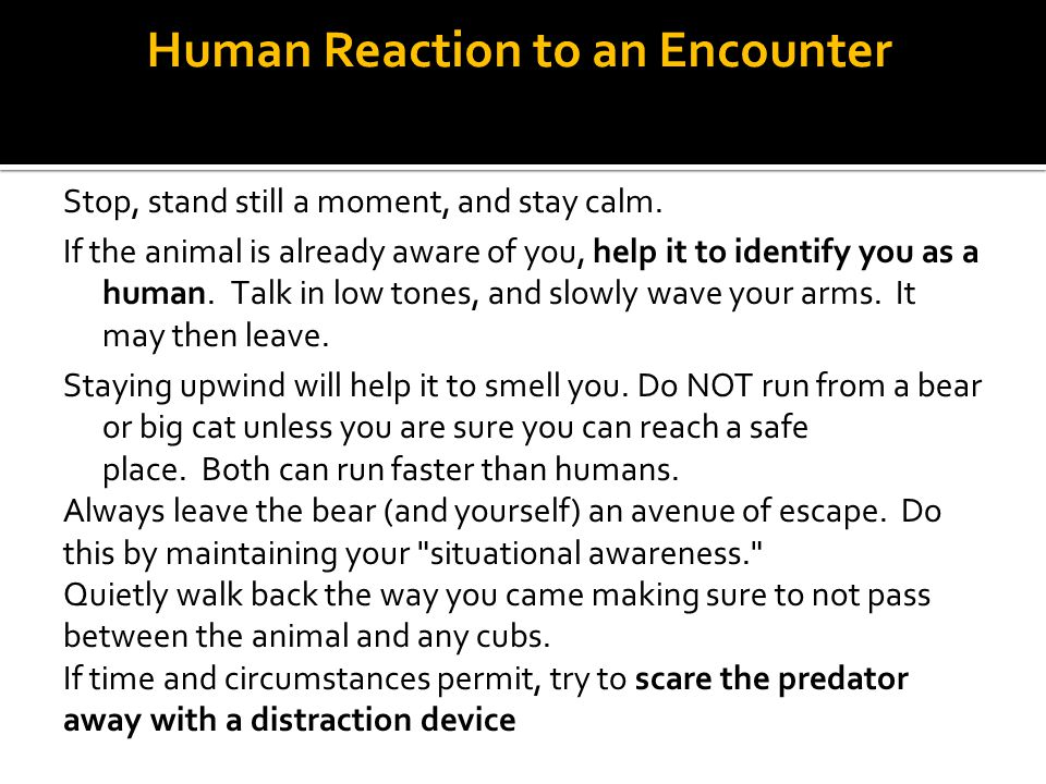 Human Reaction to an Encounter Stop, stand still a moment, and stay calm. If the animal is already aware of you, help it to identify you as a human. T