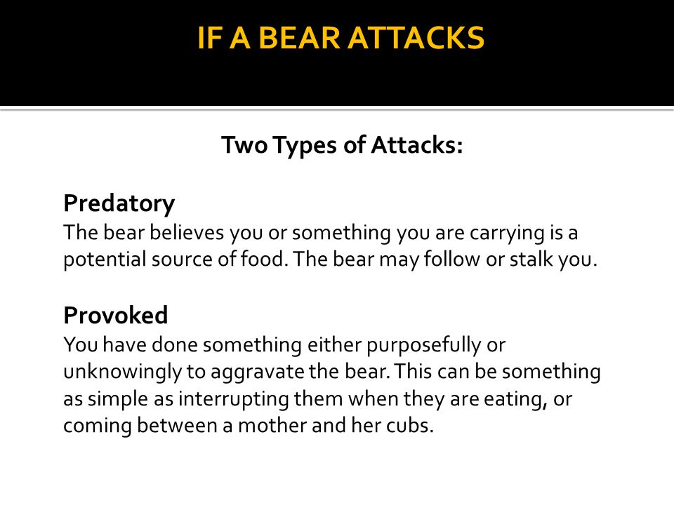 IF A BEAR ATTACKS Two Types of Attacks: Predatory The bear believes you or something you are carrying is a potential source of food. The bear may foll