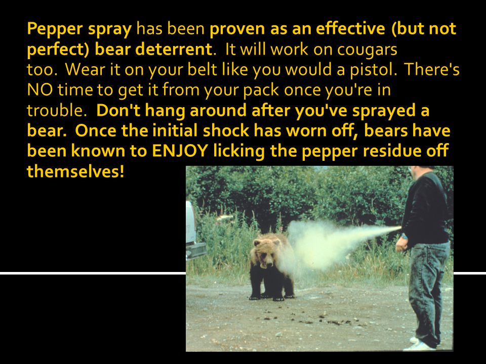Pepper spray has been proven as an effective (but not perfect) bear deterrent. It will work on cougars too. Wear it on your belt like you would a pist