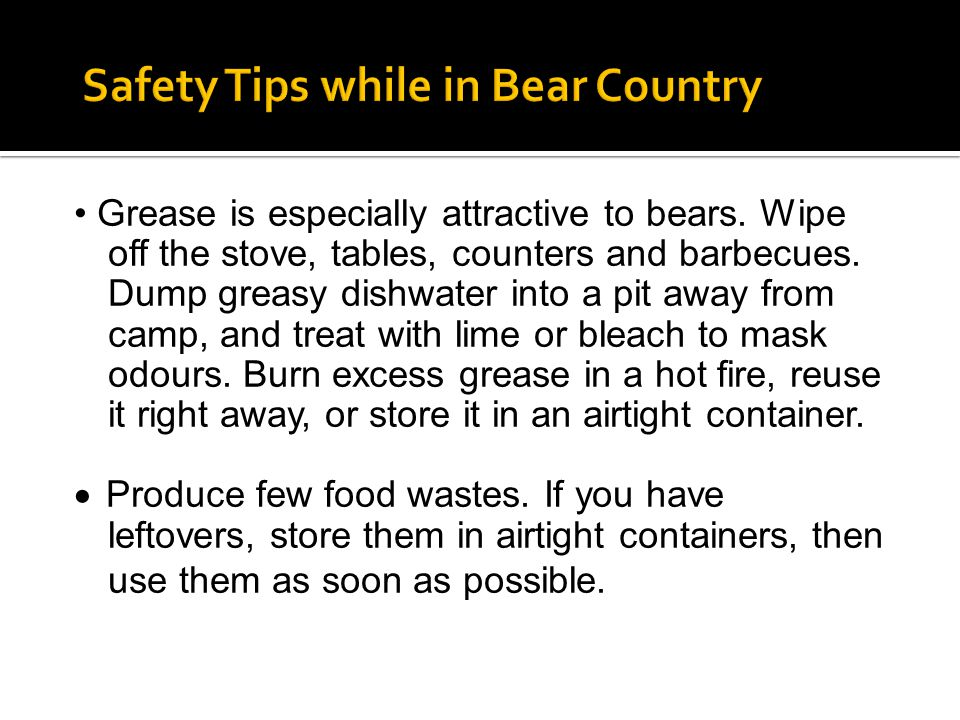 Grease is especially attractive to bears. Wipe off the stove, tables, counters and barbecues. Dump greasy dishwater into a pit away from camp, and tre